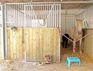 pension-chevaux