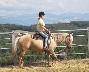 jument quarter horse palomino : Miss Flashy Leopan au travail